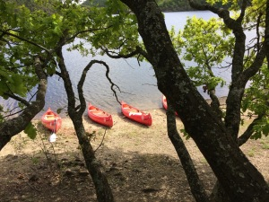 Canoes, landed